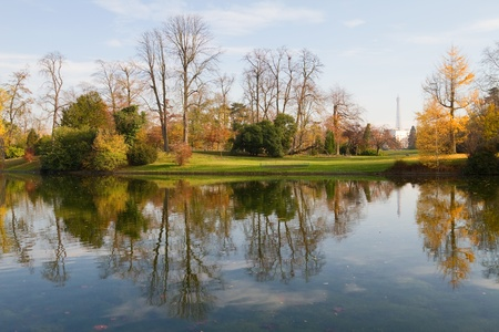 bois: A little lake in the wonderful park of Boulogne in Paris; the Eiffel Tower can be seen at the distance