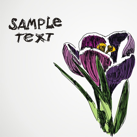 postcard with beautiful flower on grey background. Vector illustration
