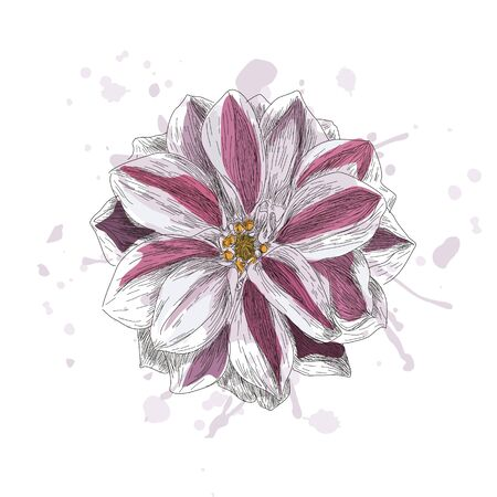 postcard with cute flower on color background.  illustration