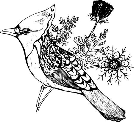 Bird with a tuft and plants on a background. Graphic illustration Illustration