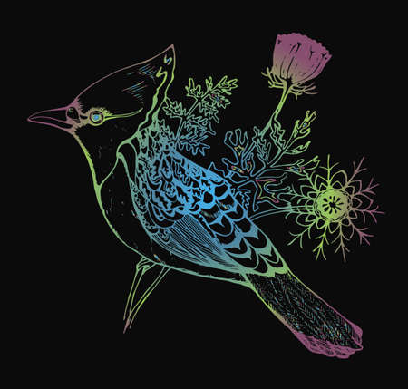 Bird with a tuft and plants on a background. Colorful graphic illustration on a black background