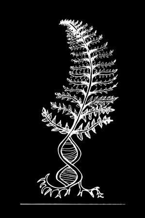 Helecho blanco y negro, con el símbolo dnk, pasando a las raíces. Ilustración de vector