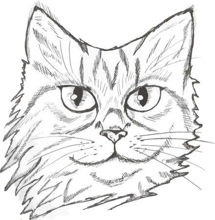 Ilustración de un retrato de un gato. Hermoso look para una mascota doméstica.