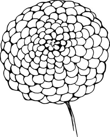706 Dahlias Stock Illustrations Cliparts And Royalty Free Dahlias