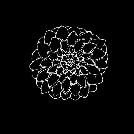 black and white picture of a dahlia flower. the idea for a tattoo