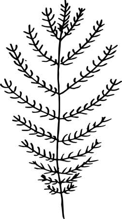 Black white pattern of a branch with leaves. Fractal plant