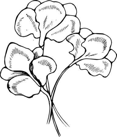 Pattern of iris flowers in hatching style.