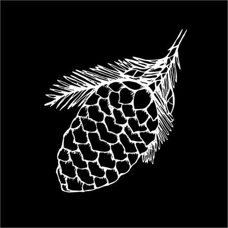 Black and white illustration of a cone fir. Tattoo idea