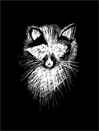 Illustration of a raccoon, made in the style of hatching. Cute animal. Illustration