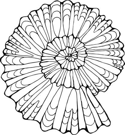 Black white picture of a petrified snail shell. Vector Illustration