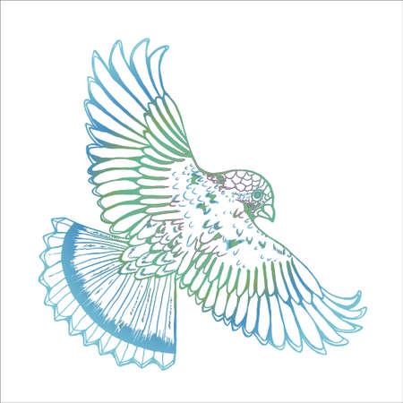 Neon gradient drawing of an eagle. Bird in flight Vecteurs