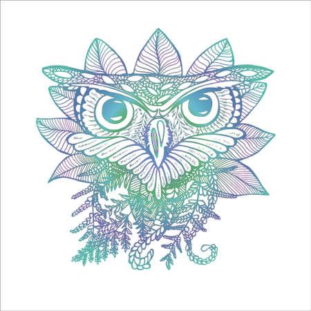 Color illustration of an owl. Drawing of an owl and plants Ilustração