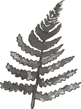Ink picture of a fern leaf. Idea for tattoo. Ilustracja