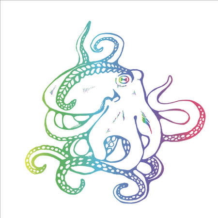 Color illustration of an octopus with algae in the form of tattoos. 矢量图像