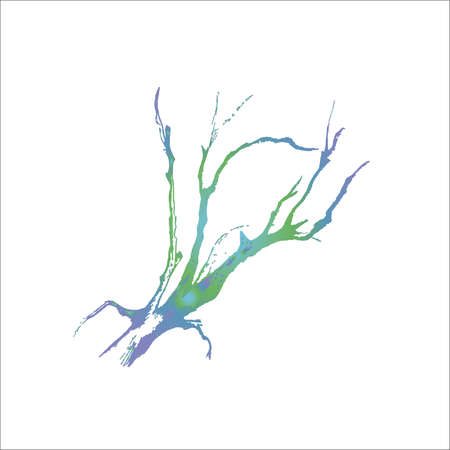Color illustration of tree branches. The play of light and shadow.