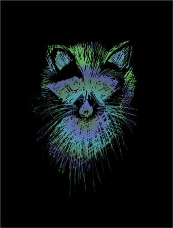 Illustration of a raccoon, made in the style of hatching. Cute animal. Ilustrace