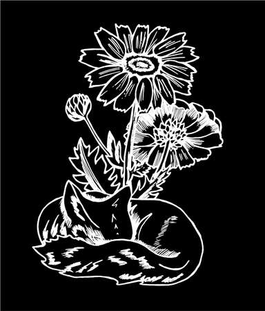 Black and white fox pattern. Illustration of a cosmic fox with flowers