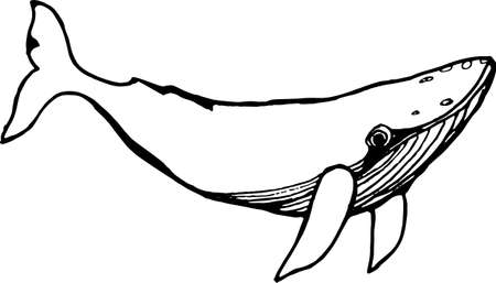 Illustration of a whale underwater in a dotwork style. Black and white picture.