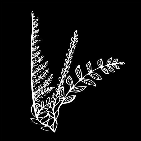 Illustration of bouquets of fern and grass. Ilustrace