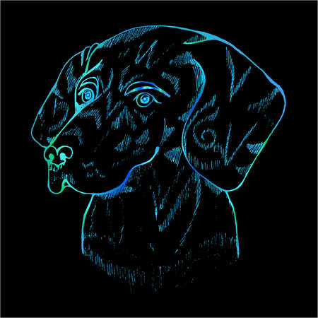Color cosmic dog illustration. Labradors head.