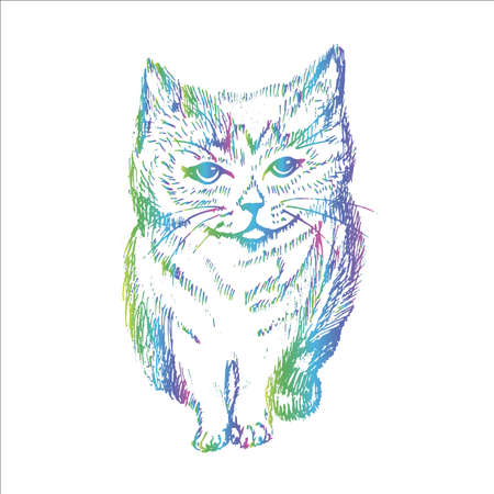 Illustration of a cat in a hatching style.