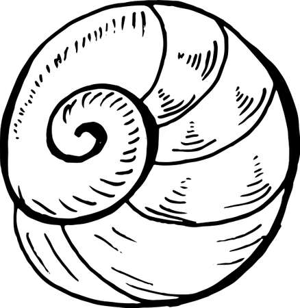 Sea animal drawing. Under water spirals line.