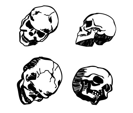 mortalidad: skull in different positions hand drawing black isolated on white background vector