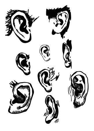 sensory: Human ears set realistic hand drawn vector Illustration
