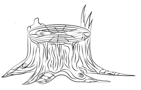 sliver: Hand drawn old stump, black and white outline, vector illustration, isolated on white Illustration
