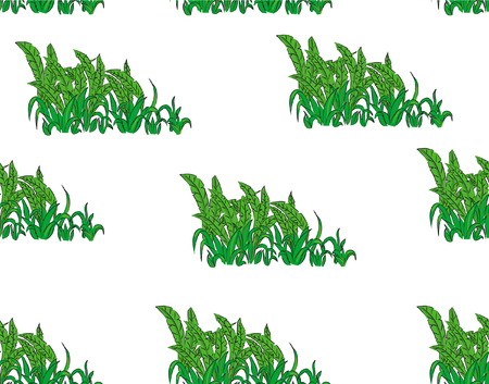 flores exoticas: Seamless Pattern. Tropical Palm Leaves Background. Banana Leaves. Vector Background. Exotic Flowers Texture. Floral Wallpaper. on white Background.