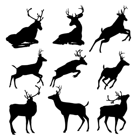 Set of deers vector silhouette illustration, isolated on white background. Group of 9 deers vector.