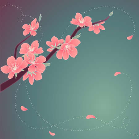 Greeting card with blooming branch of the peach Vector