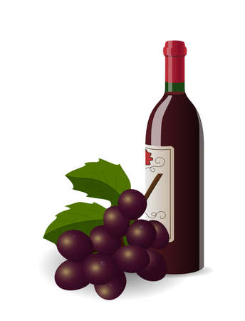 wine growing: Realistic illustration of wine bottle  and bunch of grapes