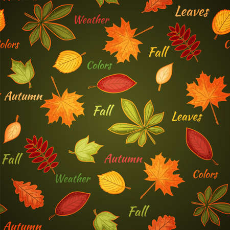 seamless pattern with many-colored autumn leaves and words on the dark green background Stock Vector - 15730130
