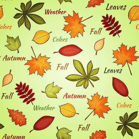 seamless pattern with many-colored autumn leaves and words on the light background Vector