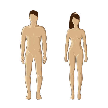 nude male: mannequins of man and woman in brown color Illustration