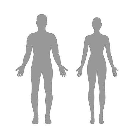 corpo umano: sagome di uomo e donna in grigio illustrazione a colori