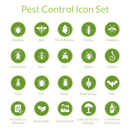 Vector icon set with insects like flies, cockroaches, bed bugs, spiders and termites for pest control companies