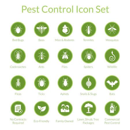 Zestaw ikon wektorowych z owadów takich jak muchy, karaluchy, pluskwy, pająki i termity dla firm zwalczania szkodników