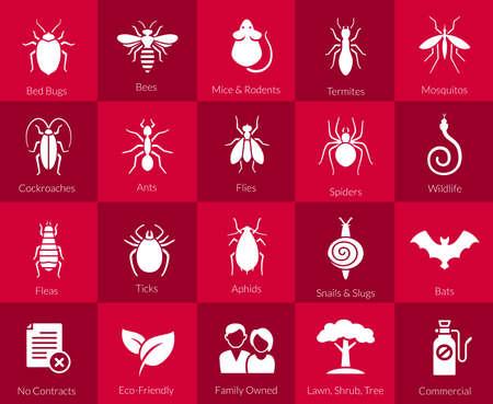Vector iconen van plaaginsecten zoals vliegen, kakkerlakken, bedwantsen, spinnen termieten en dieren zoals vleermuizen, muizen en slangen voor ongediertebestrijding bedrijven