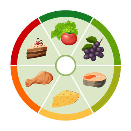 Food vector chart with the different types of food products in the form of wheels, health care infografics