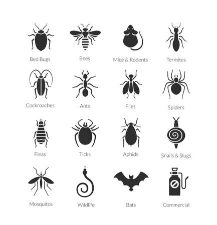 Vector black and white icon set of different insects like flies, cockroaches, bed bugs, spiders, buds, mosquitos and termites for pest control companies
