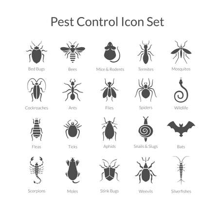 Vector black and white icons of different insects like scorpions, stink bugs, bed bugs, weevils and termites for pest control companies. Included some animals like bats, moles, mice and snakes.