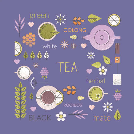 Vector pastel background of different types of tea like black, oolong, green and white tea with anise, rooibos and chamomile. Illustration