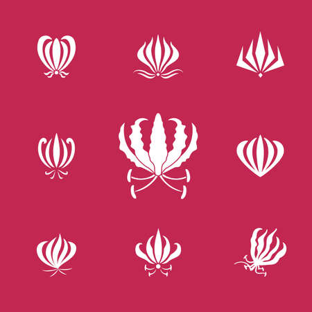 Vector set of white silhouettes gloriosa or flame lily flower. Elements for logos