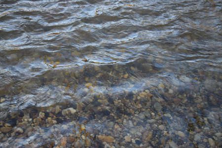 Silent water in a river with stones