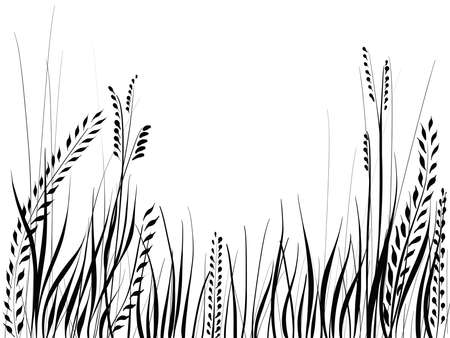 hand drawn silhouette of grass