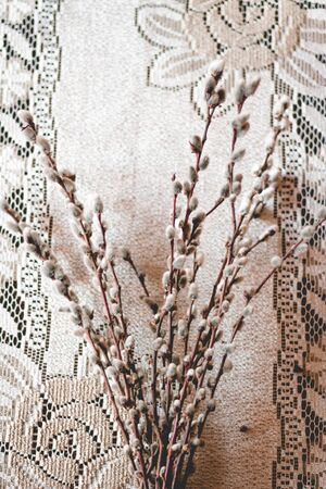 Easter decoration with catkins on white craftmade. Easter card