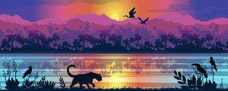 Colorful vector panorama with leopard, toucan, parrots, sunrise, river and rainforest on the background. Stock jungle landscape with palm trees, reflections in water and exotic animals for banners