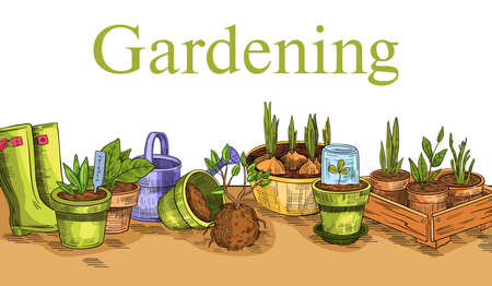 Vector horizontal banner with seedlings, plants, pots, watering can and rubber boots. Illustration in engraving style for gardening shops, markets, farming enterprises, landing pages, advertisements.